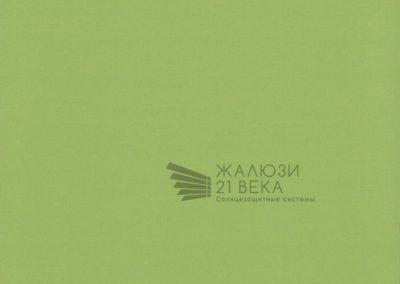 121. Карина-светло-зеленый
