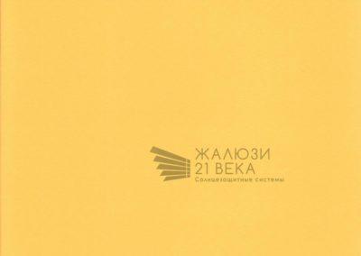 213. Мадагаскар-желтый